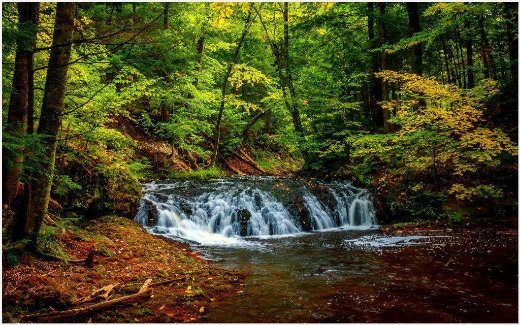 Waterfalls Wallpapers 1080p: Green Forest Beautiful Waterfalls Wallpaper