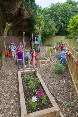 Designing And Creating A Wildlife Garden For Children U2013 On A Shoestring