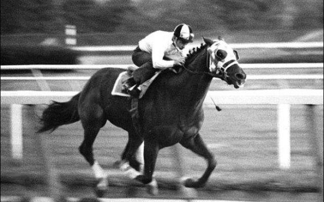 Secretariat: un cavallo da leggenda! #secretariat #ippica #triplecrown #leggenda