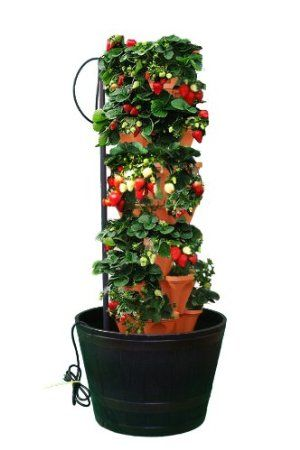 Amazon Com Mr Stacky Stacking Hydroponic Pots Tower The Vertical Container Hydroponics Growing System To Home Hydroponics Hydroponic Gardening Hydroponics