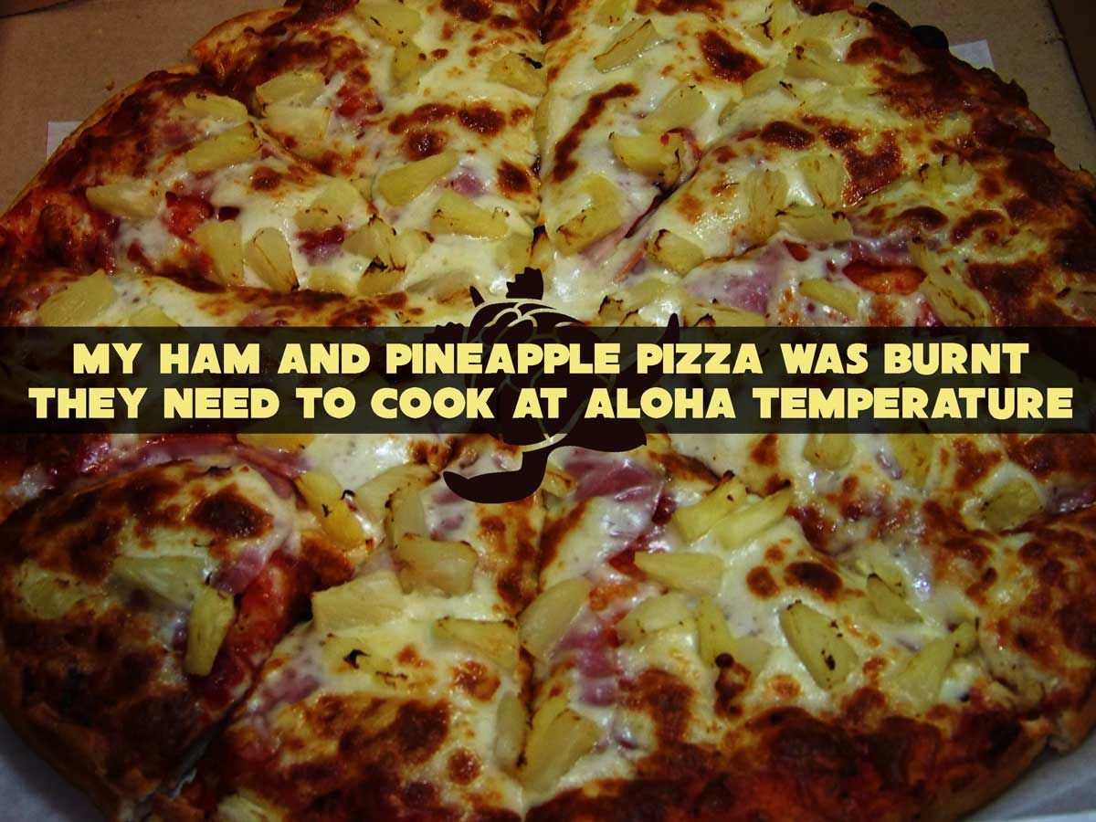 146bd3d07cd76211533262ceeac656c5 hawaiian pizza pun pizza puns, hilarious and meme,Hawaiian Pizza Funny Memes