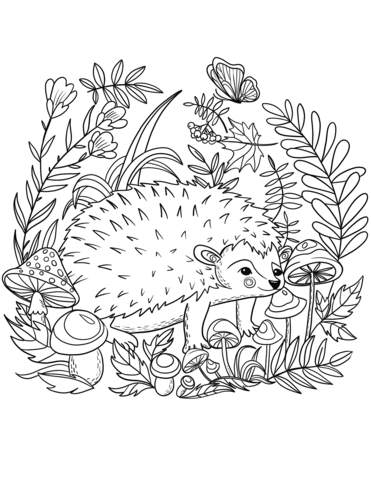 Hedgehog Coloring Page Animal Coloring Pages Hedgehog Colors Free Coloring Pages