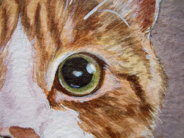 Painting A Cat My Slideshow Tutorial Animal Paintings Cat Art