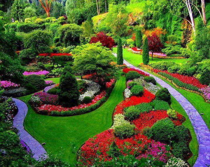 imagenes de jardines hermosos - Buscar con Google I like puppies