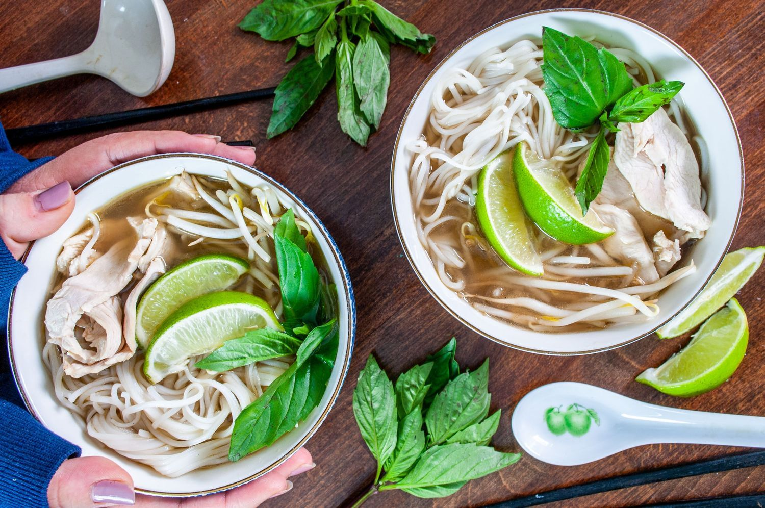 Instant Pot Chicken Pho Recipe Chicken pho, Food 52