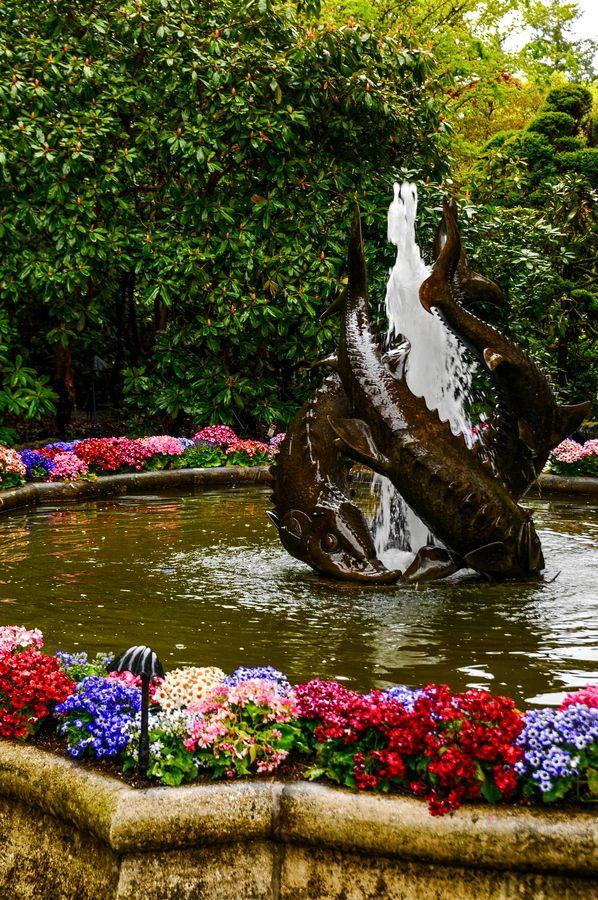 Fish Fountain - Victoria, British Columbia   Flowers ...