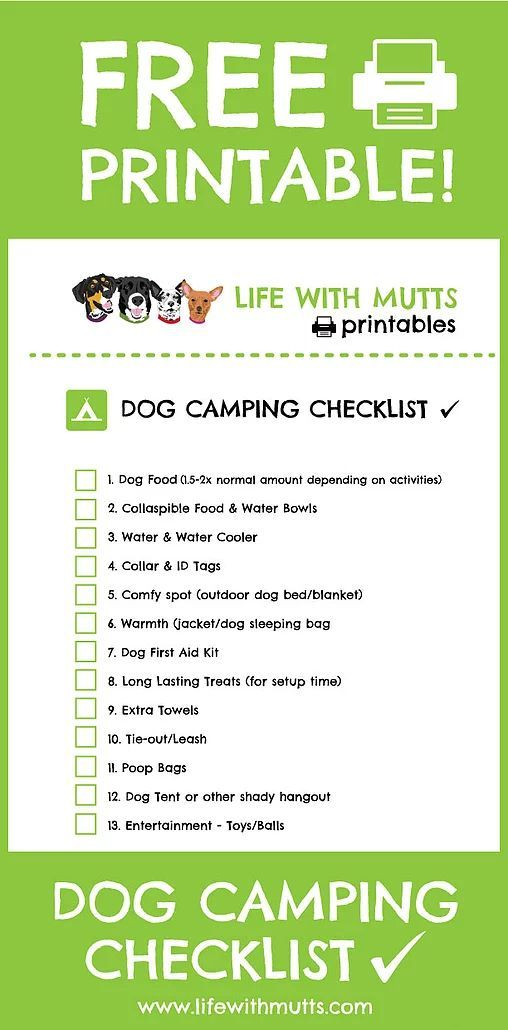 Ultimate Dog Camping Gear List PLUS Printable Checklist