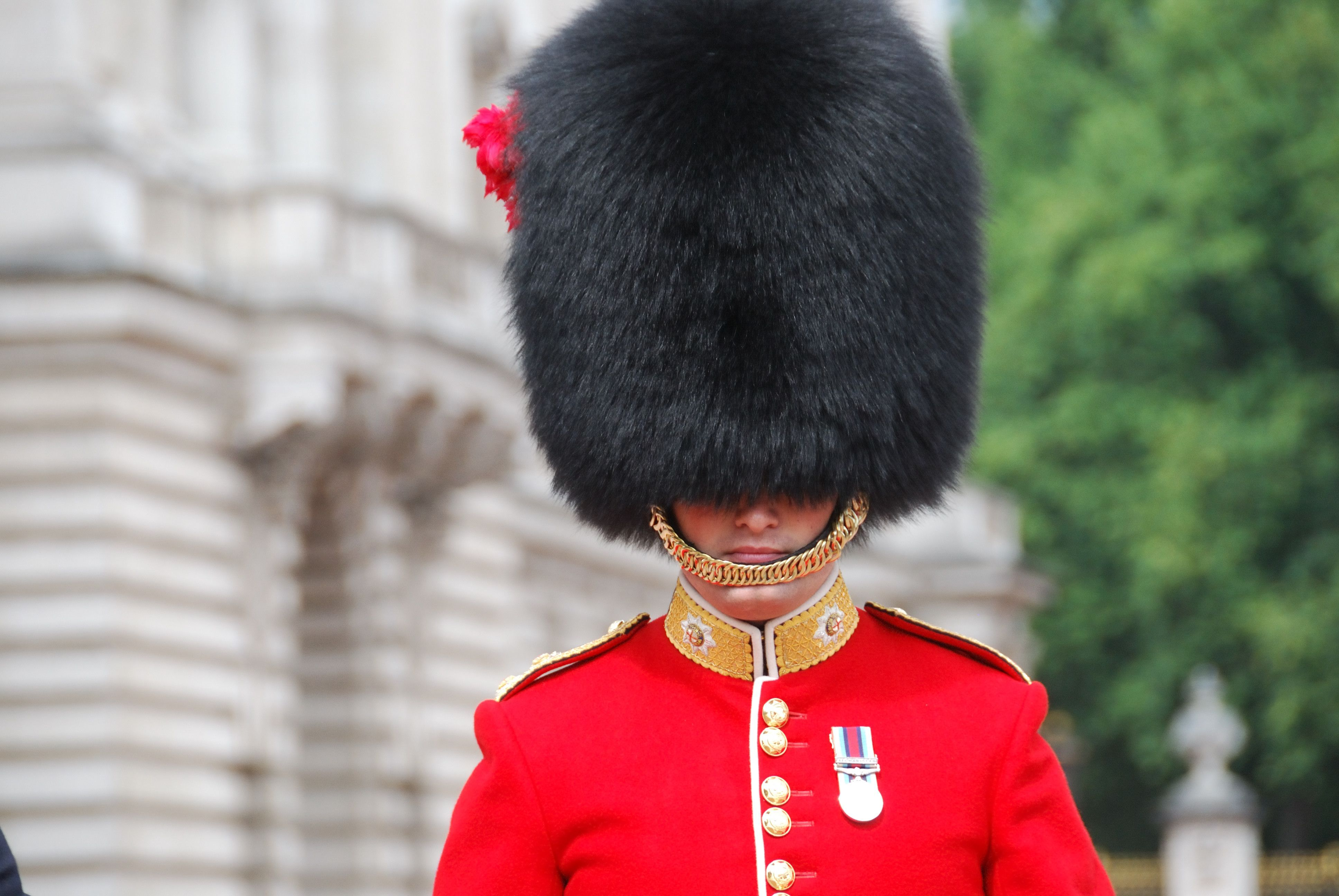 Spending on British Army's bearskin hats soars by 500% in ... |Buckingham Palace Guards Hats