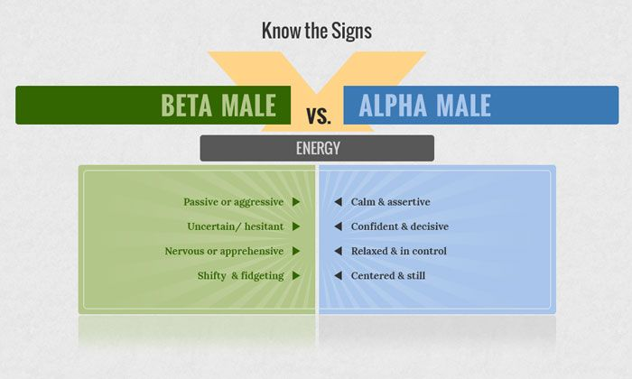 Are You a High Status Male? | Alpha male, Alpha male