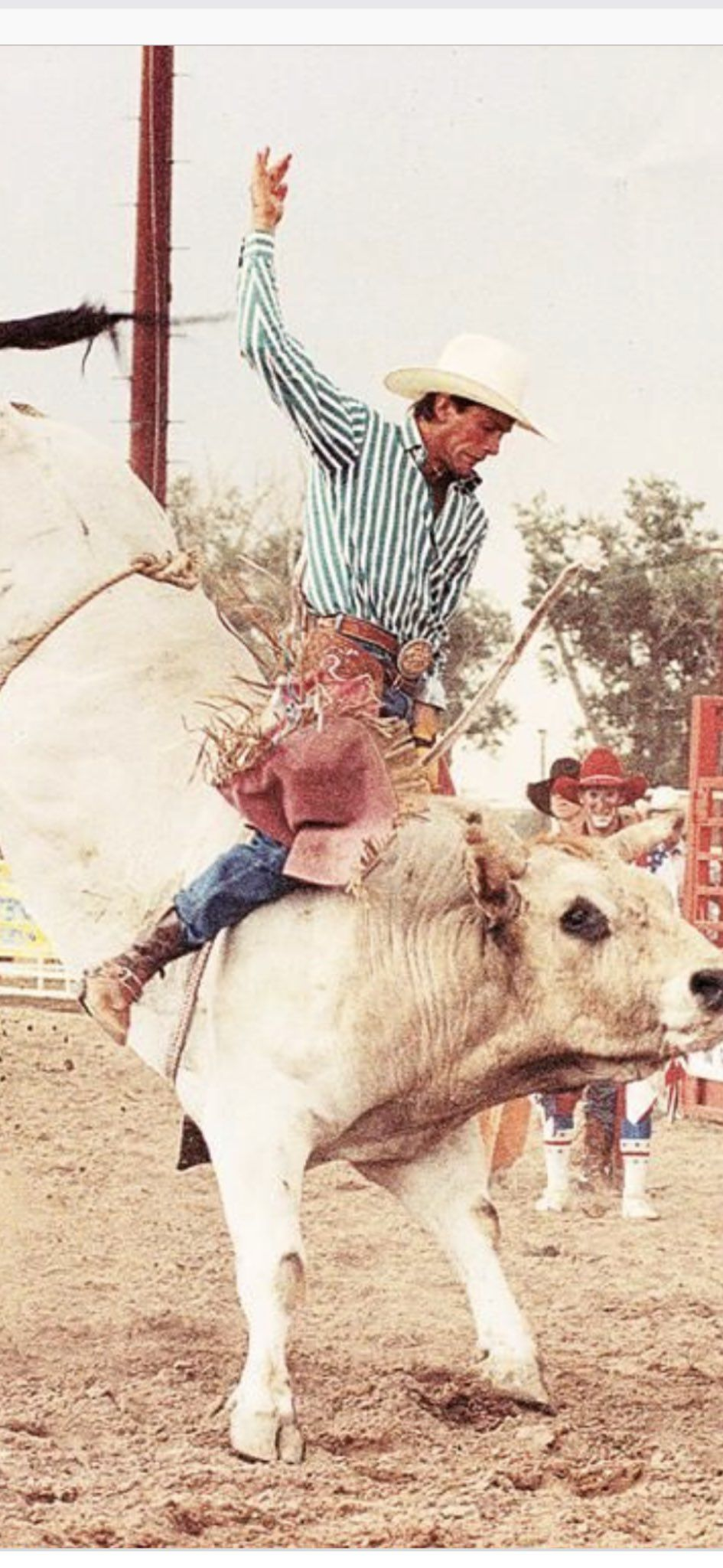 Lane Frost With His Pink Chaps Western Photography Western Wall Art Western Photo