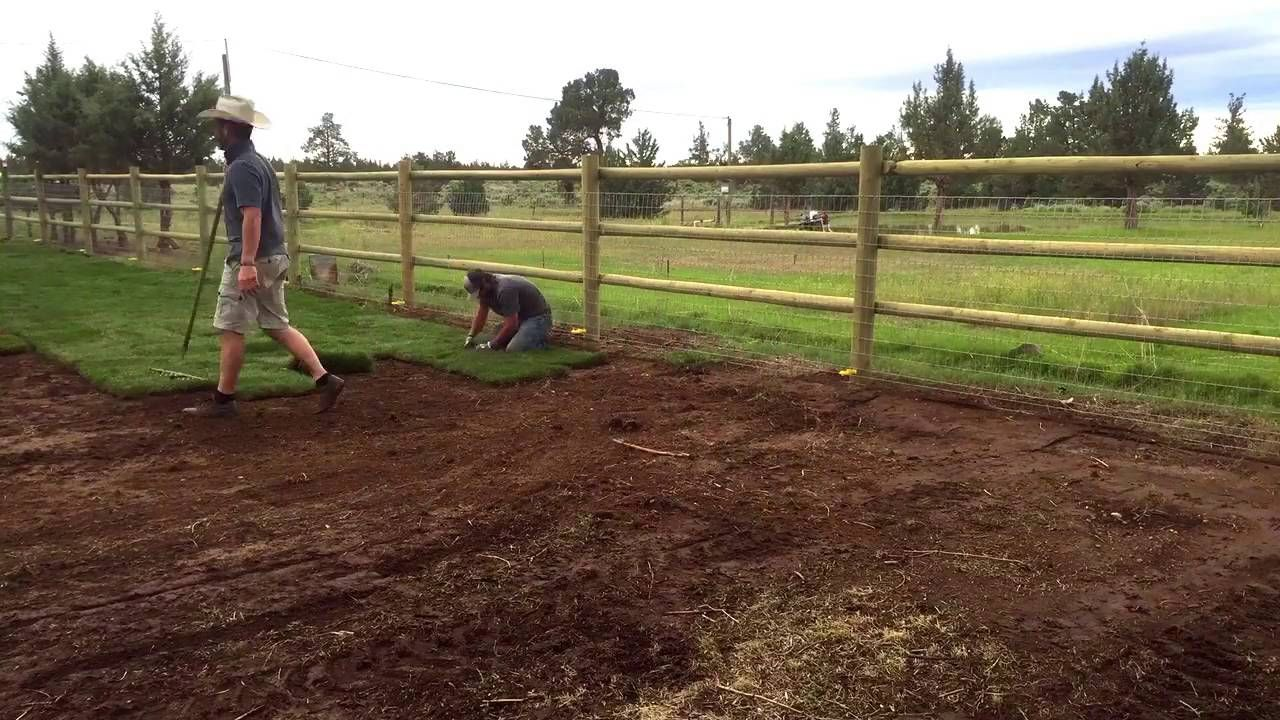 Commercial landscaping in redmond oregon 541 7970470