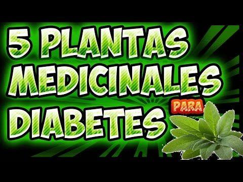 jugo de hierbas para la diabetes