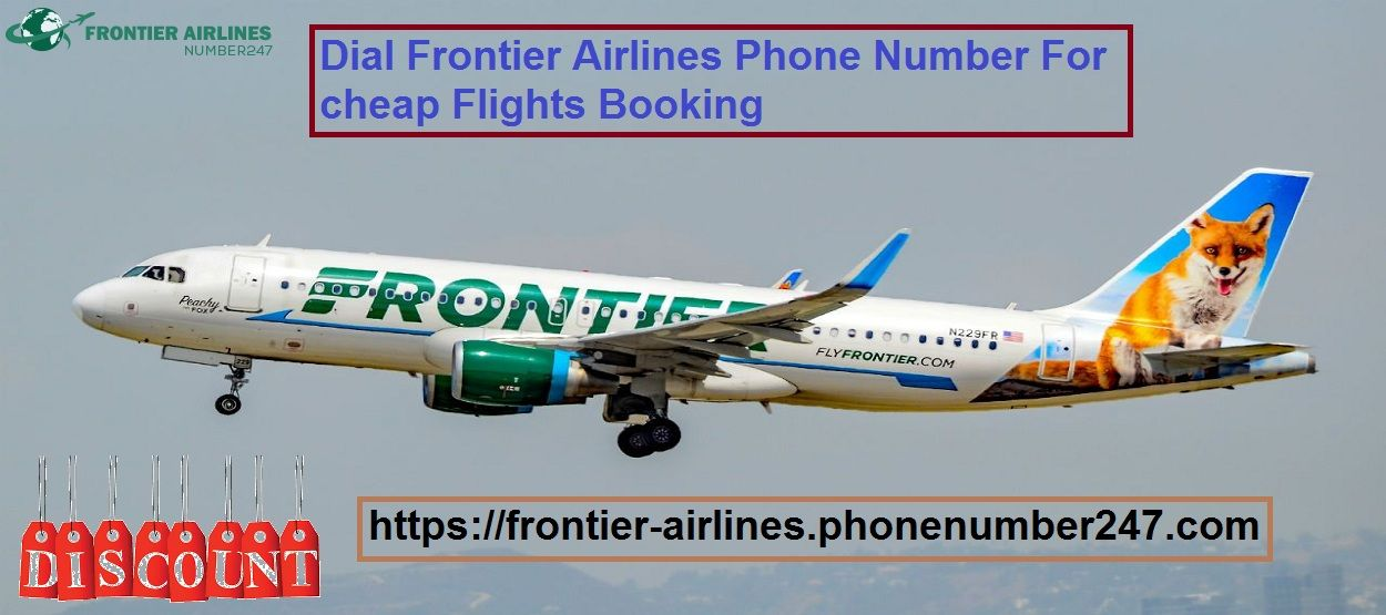 Dial Frontier Airlines Phone Number For Cheap Flights Booking Booking Flights Book Flight Tickets Cheap Flights