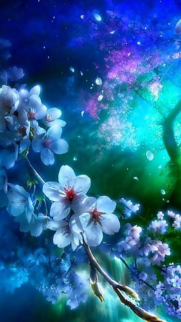 Purple And Blue Color Mix Beautiful Wallpapers Backgrounds Purple Flowers Wallpaper Anime Backgrounds Wallpapers