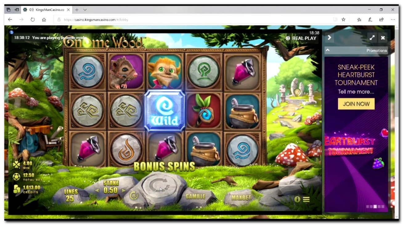 LeoSafePlay Released, A Responsible Gaming Initiative From Leo Vegas Casino