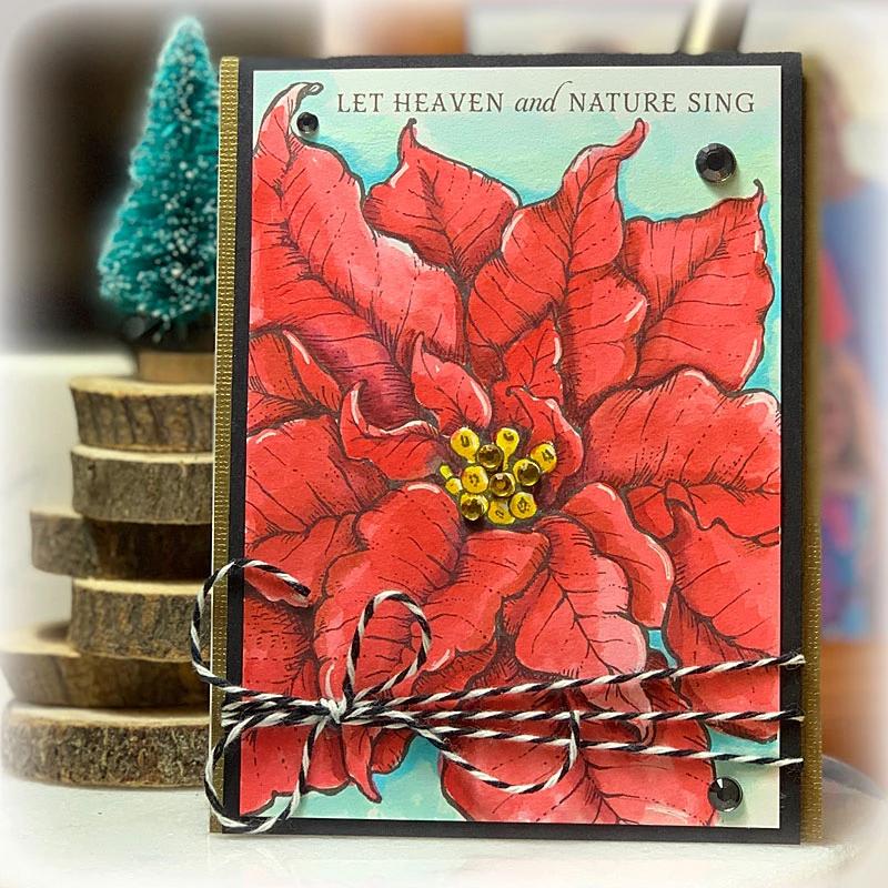 Poinsettia XL Digital Stamp Set