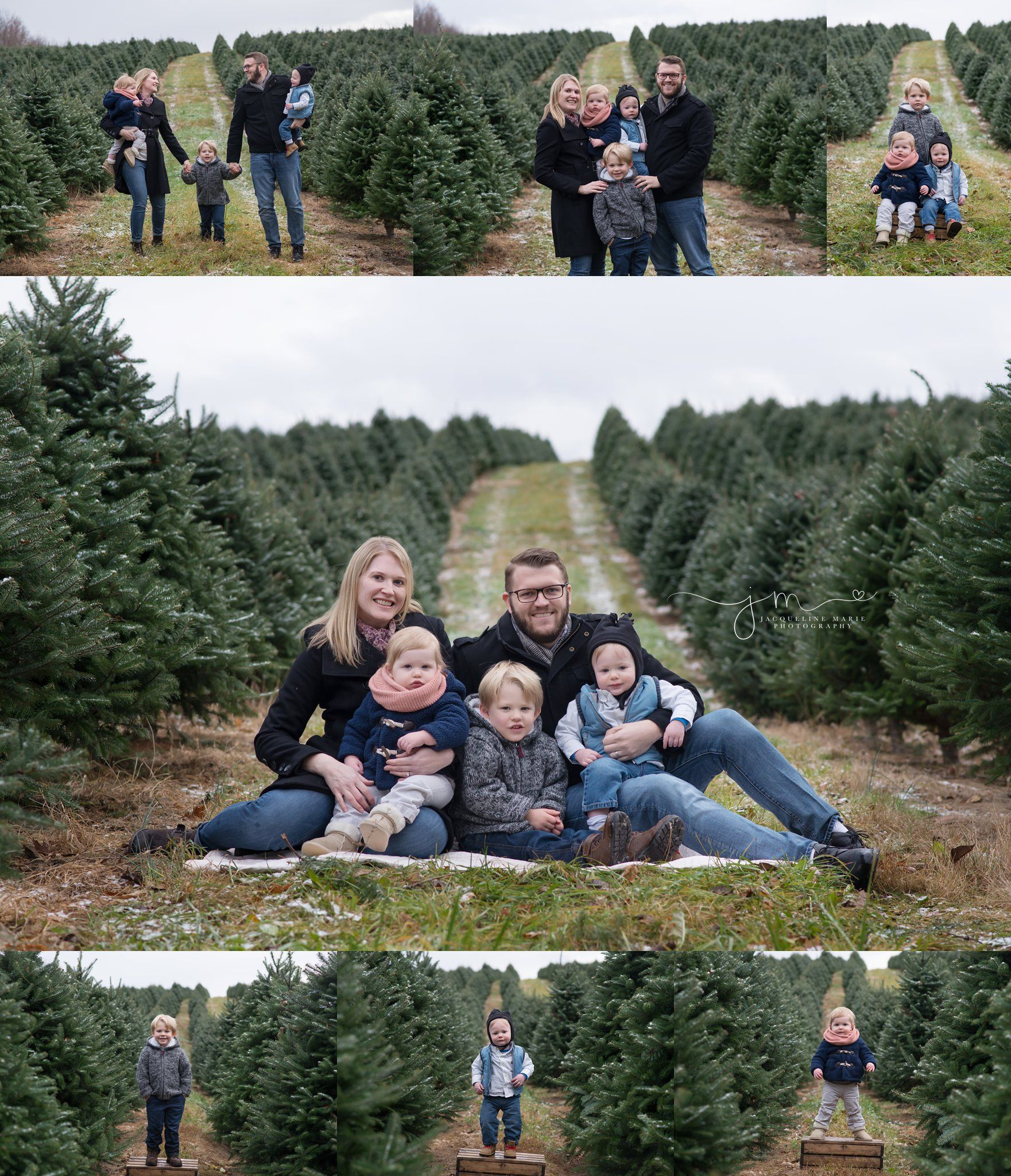 Columbus OH family photography, Christmas sessions at tree ...