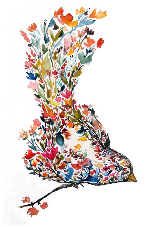 m hala bl te vogel aquarell von kianamosleystudio kunst vogel bl te malen zeichnen. Black Bedroom Furniture Sets. Home Design Ideas
