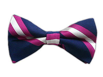 Stripes Navy Fuschia Bow Tie Bowtie