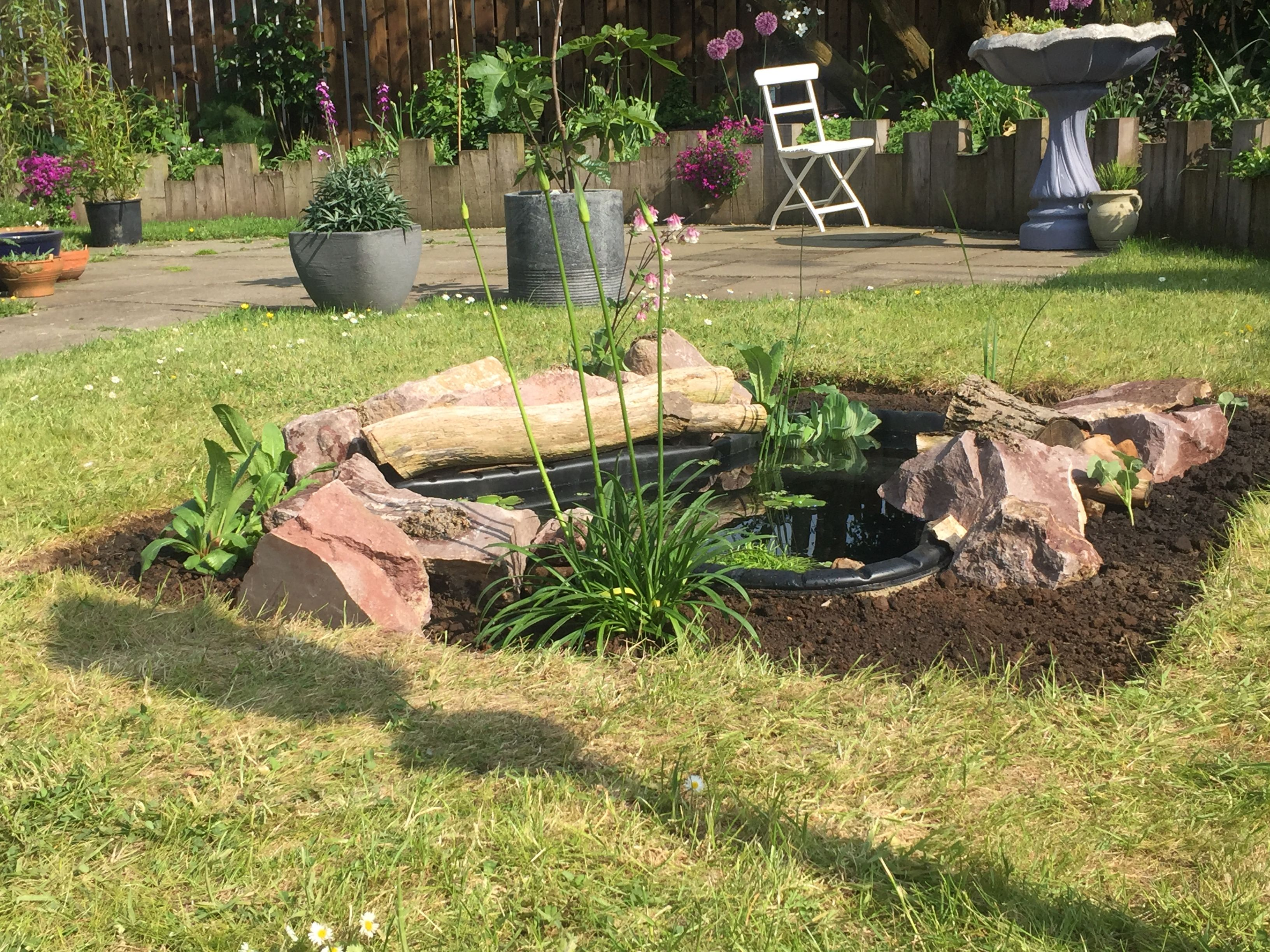 Garden Pond  Planting And Edging