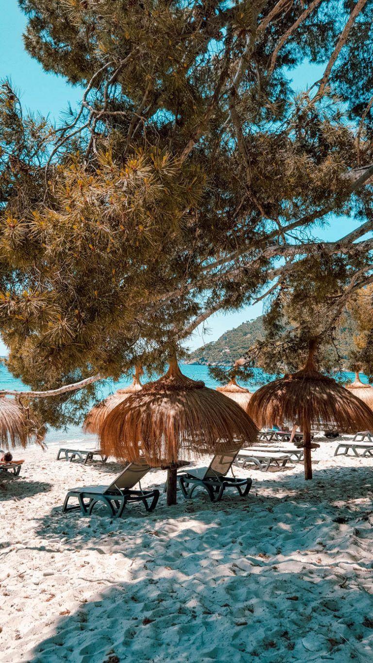 Photo of Playa de Formentor – ein Strand wie in der Karibik – Mallorca Momente