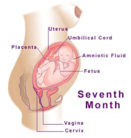 Pin On My Pregnancy