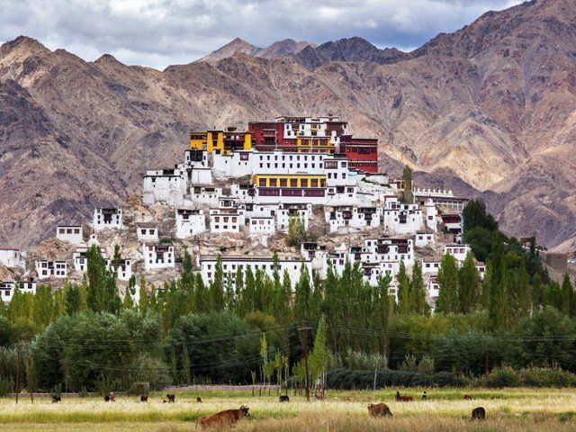 Thikse Monastery, Ladakh, India  Image Source / SuperStock