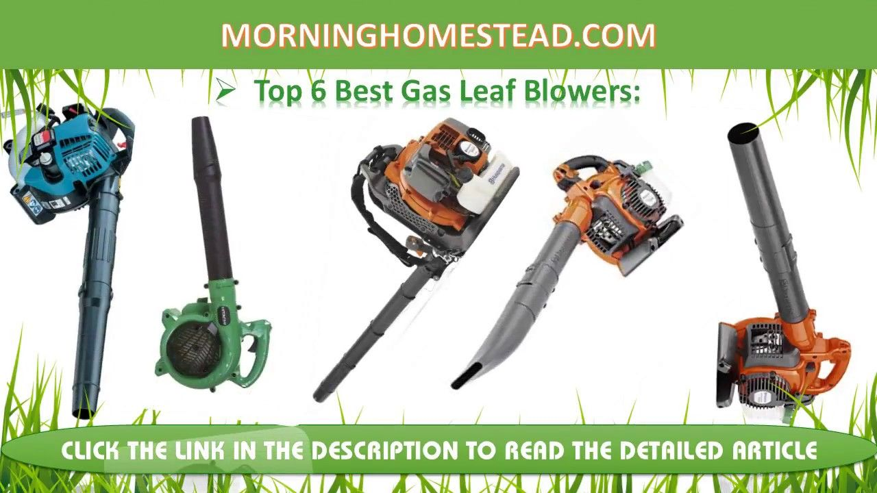 What Is The Best Gas Leaf Blower For The Money Leaf Blower Best Garden Tools Garden Tools Diy