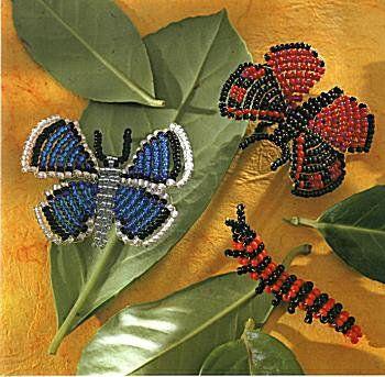 Papillons et Chenille
