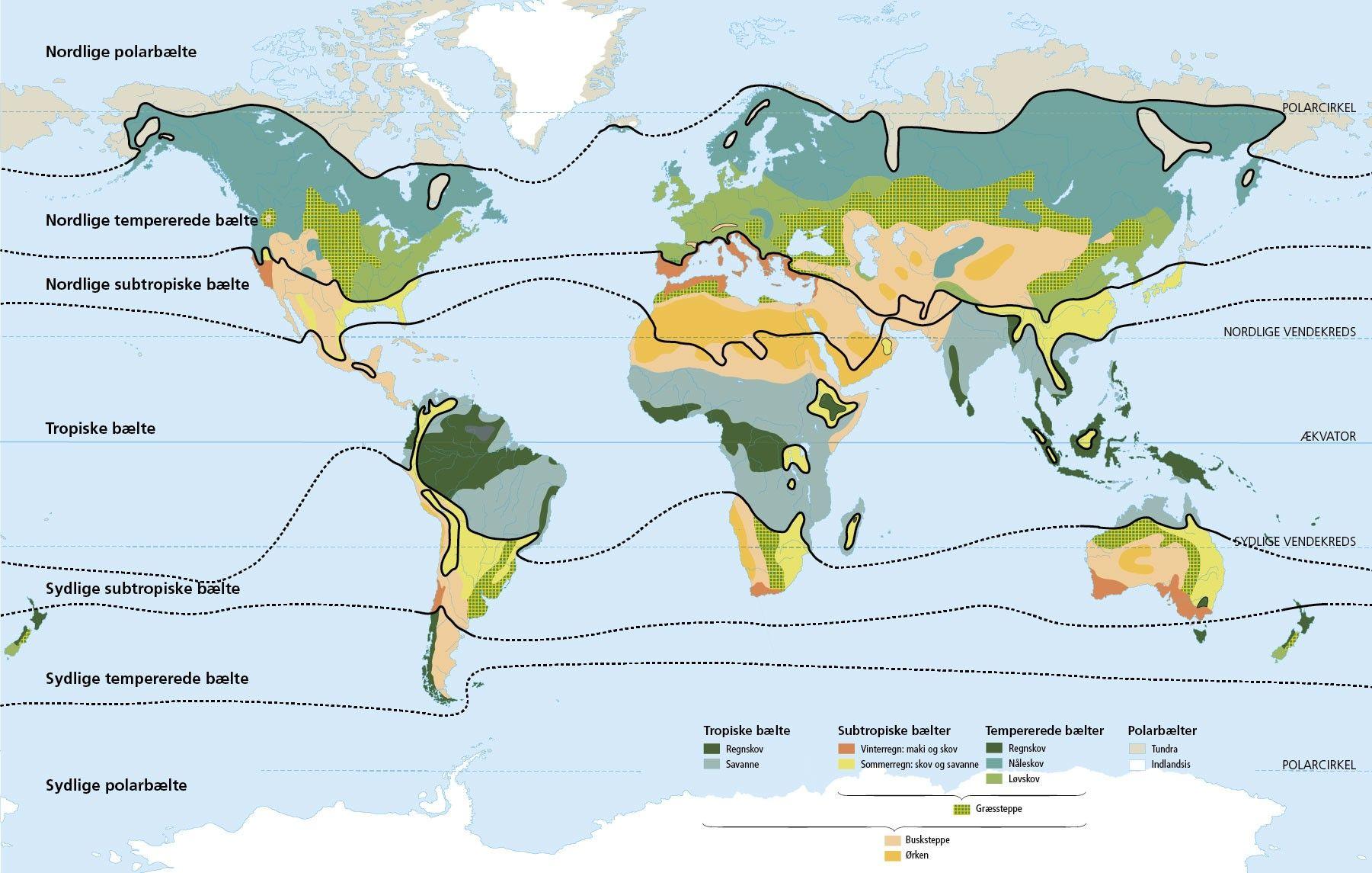 Image Result For Klima Baelter Baelter Tropisk Nord