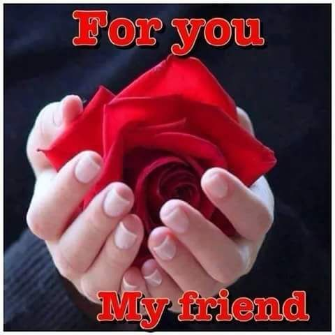 For You My Friend