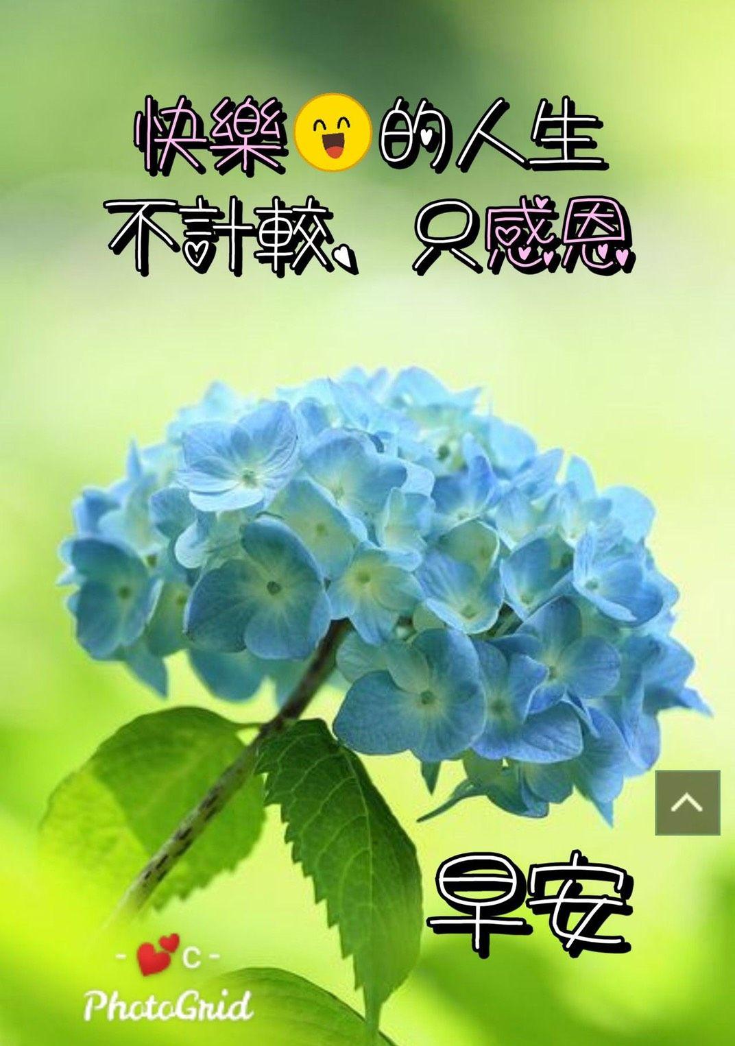 快樂的人生不計較 只感恩 早安 in 2020   Good morning greetings ...