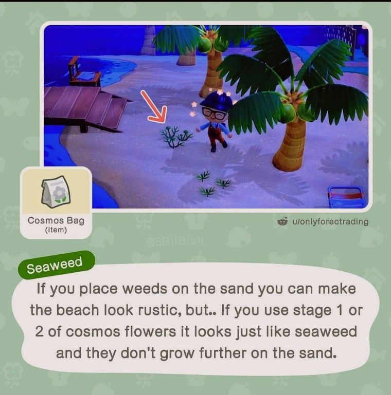 Credit To 8bitbish On Instagram Animal Crossing New Animal Crossing Animal Crossing Memes