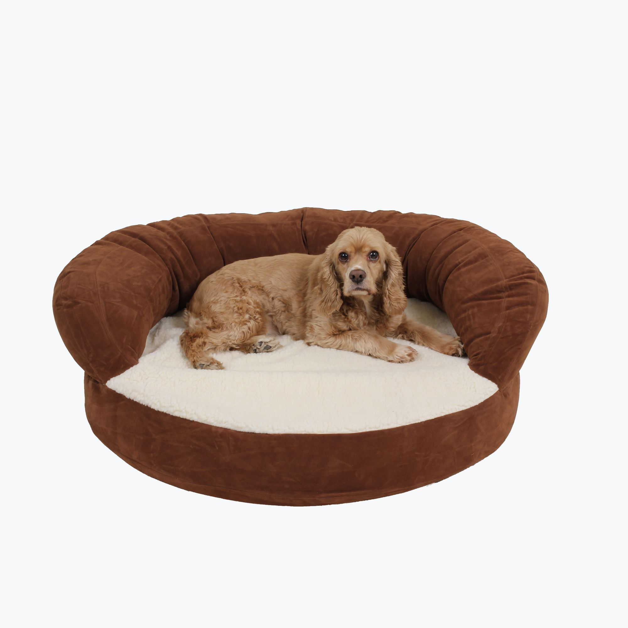 Ortho Sleeper Bolster Bed Pet bed, Pet companies