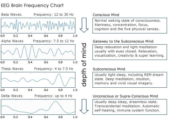 Brain Waves And The Deeper States Of Consciousness | The Mind Unleashed