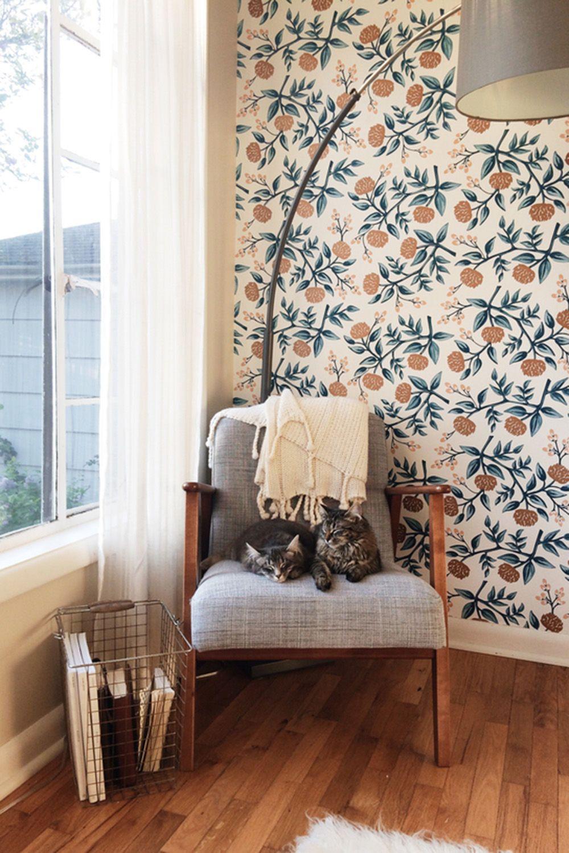 Diese Tapeten Sollten Sie Kaufen: Pastelltöne, Wände In Dunkelblau,  Fototapeten Und Rauer Putz