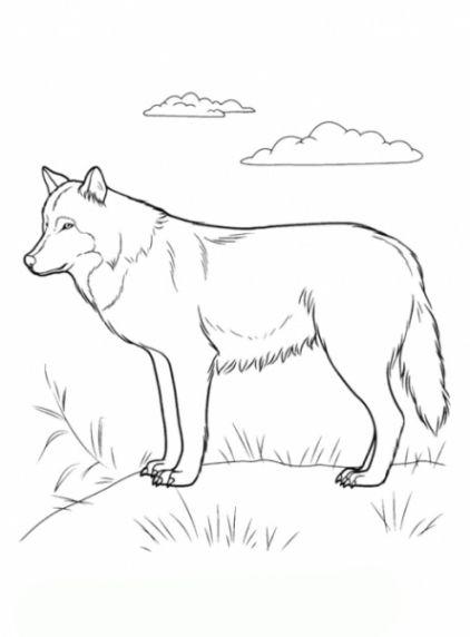 Bildergebnis Fur Malvorlagen Wolf Gratis Malvorlagen Tiere Malvorlagen Kreidemalerei