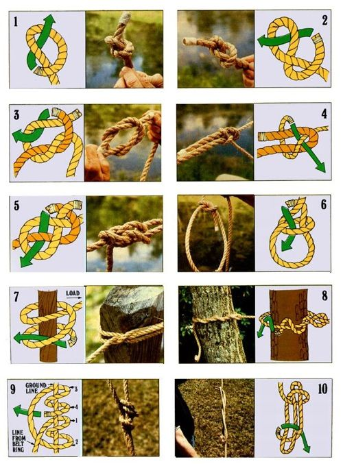 Here's a guide on how to tie 10 useful knots including -    1-Overhand Knot  2-Figure-eight Know  3-Reef (Square) Knot  4-Sheet (Becket) Bend  5-Carrick Bend  6-Bowline  7-Clove Hitch  8-Timber Hitch  9-Taut-line Hitch  10-Sheepshank