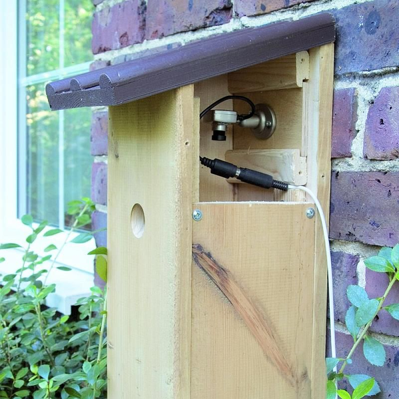 Infrared Camera 32mm Nest Box CJ Wildlife (Ireland