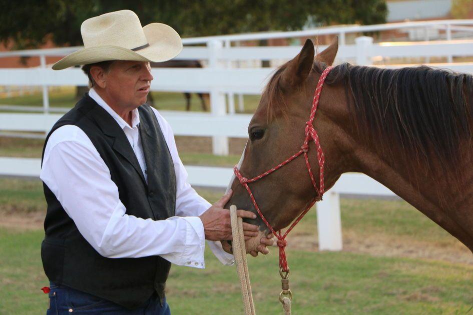 Horse Power The Tulsa Boys Home Uses Horses For Therapy Boys Home Horses Boys