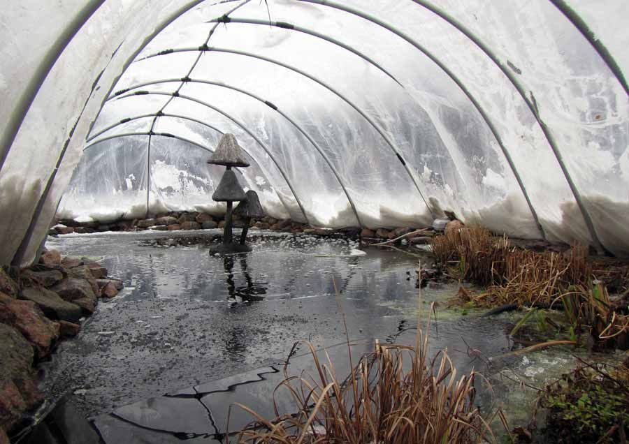 Winter Pond Cover Pond Covers Pond Landscaping Pond