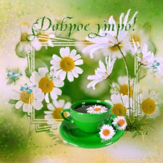 Анимации ассасина, летняя картинка с добрым утром счастья радости
