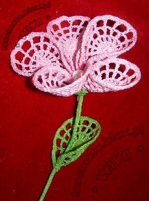kwiatek z kółek