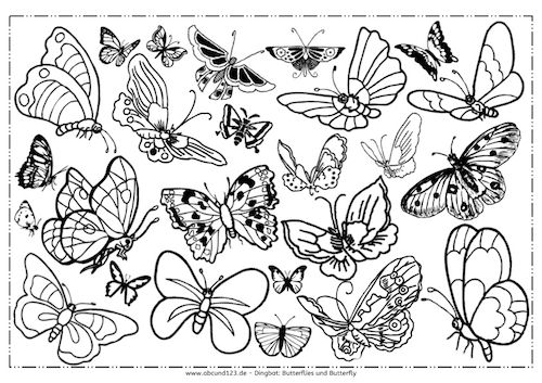 Freebie Und Pause Abcund123 Insect Coloring Pages Butterfly Illustration Colorful Butterflies