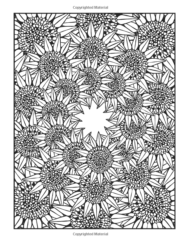 dover publications creative haven nature fractals coloring book mary agredo and javier agredo