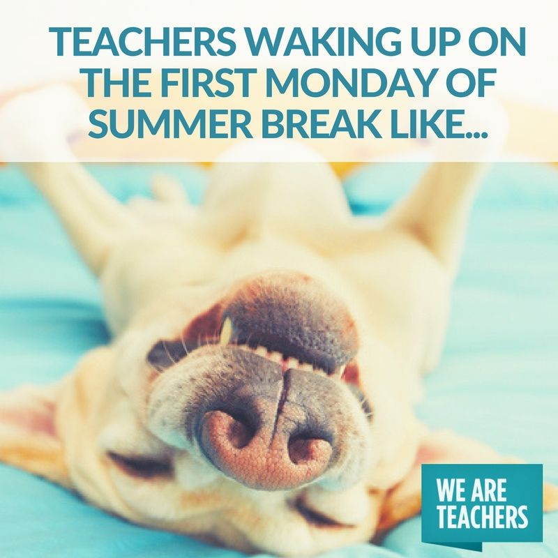31 End Of Year Memes For Teachers Who Are Just Hanging On Teacher Memes Teacher Humour Teacher Humor