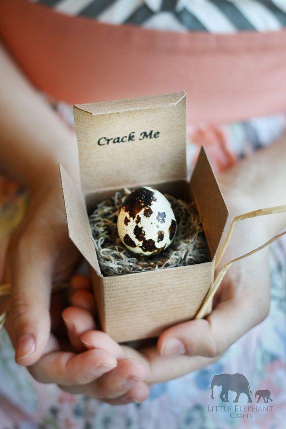 10 Crack Me Pregnancy Announcements in Quail Eggs Gender – Custom Baby Announcements