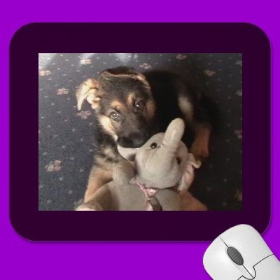 Mousepad - available at http://www.zazzle.com/german_shepherd_puppy_mousepad-144471541063515873?gl=WestCreek=238232710640538046