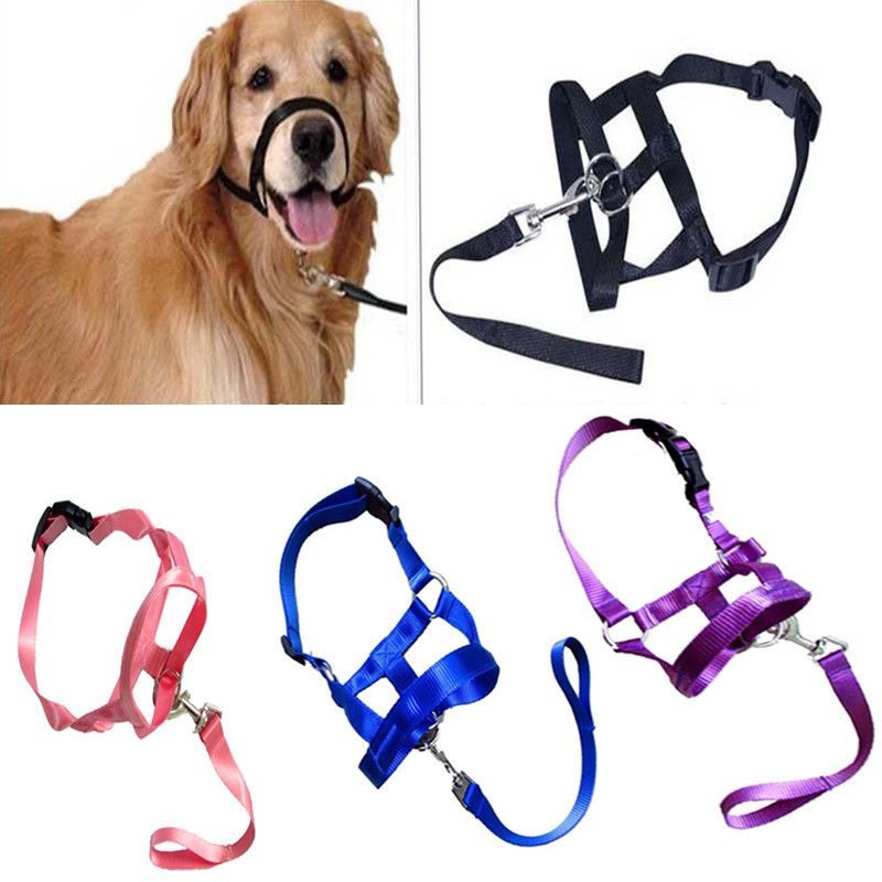 Details About Pet Gentle Leader Dog Training Head Collar Muzzle