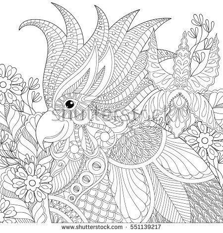 Exotic Zentangle Cockatoo Parrot For Adult Anti Stress Coloring Pages Book Bird Head With Tropical Flowers Plants Art Therapy Greeting Card